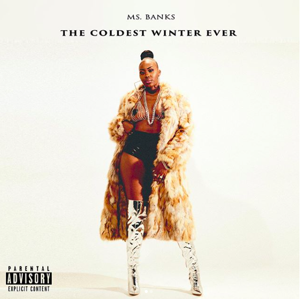 an examination of the coldest winter ever by sister souljah Hip-hop star, political activist and now writer, sister souljah exhibits a raw and  true voice (though her prose is rough and unsophisticated) in this cautionary tale .